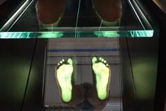 piedi_1